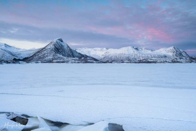 Captured at Lofoten on 17 Feb, 2019 by Marije Rademaker