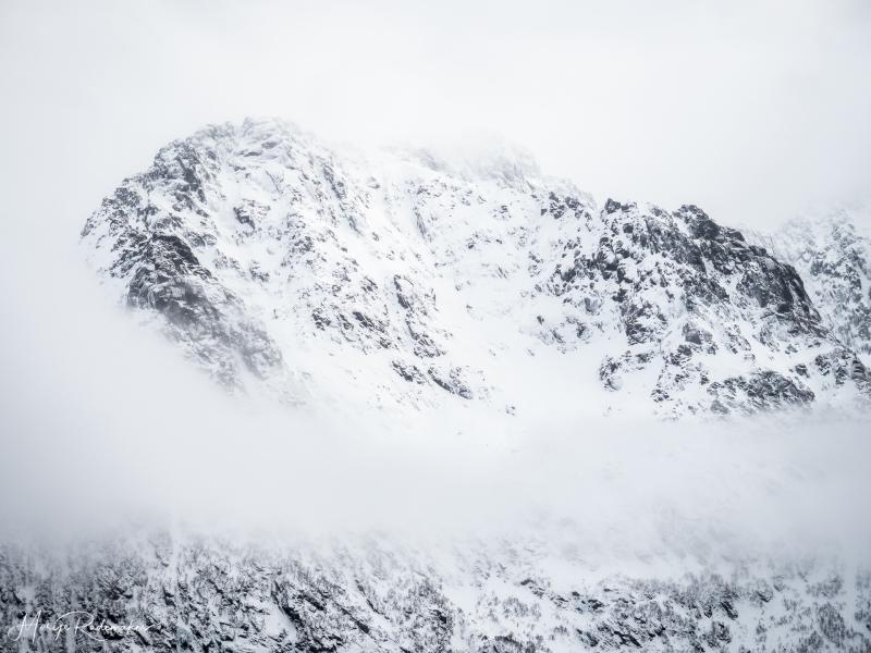 Captured at Lofoten on 18 Feb, 2019 by Marije Rademaker