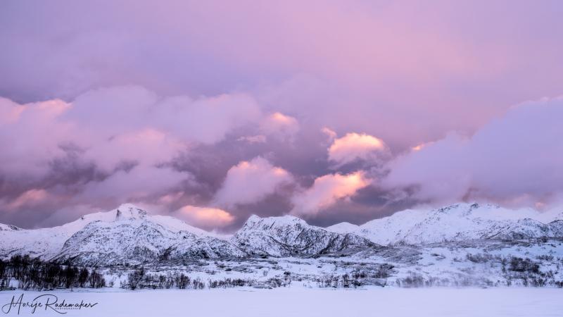 Captured at Lofoten on 19 Feb, 2019 by Marije Rademaker