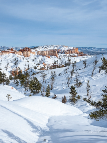 Captured at Bryce Canyon on 03 Dec, 2019 by Marije Rademaker